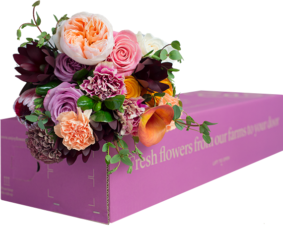 EF-MDAY-BOUQUET-2018-MAIN.png